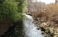 Saw Mill River