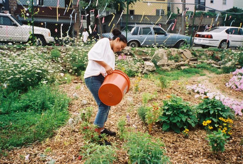 Neighborhood Greening 2