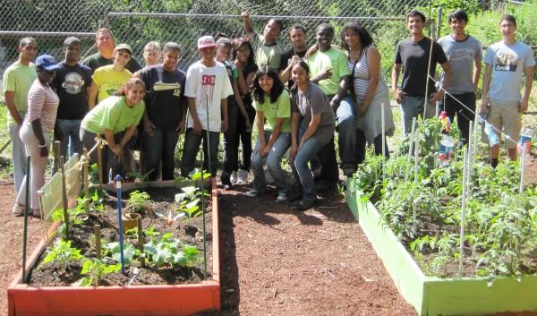 Community Garden Walnut group horizontal