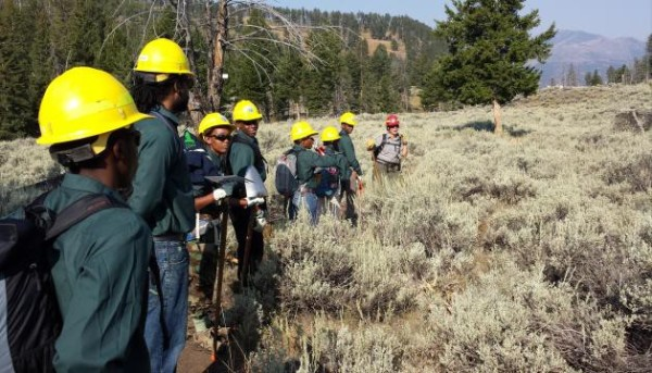Groundwork USA Corps Experience in Yellowstone National Park